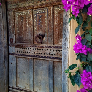 Door and bourganvillea