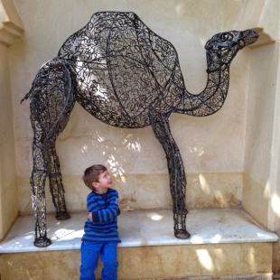 Wire camel, Claudio Bravo's house